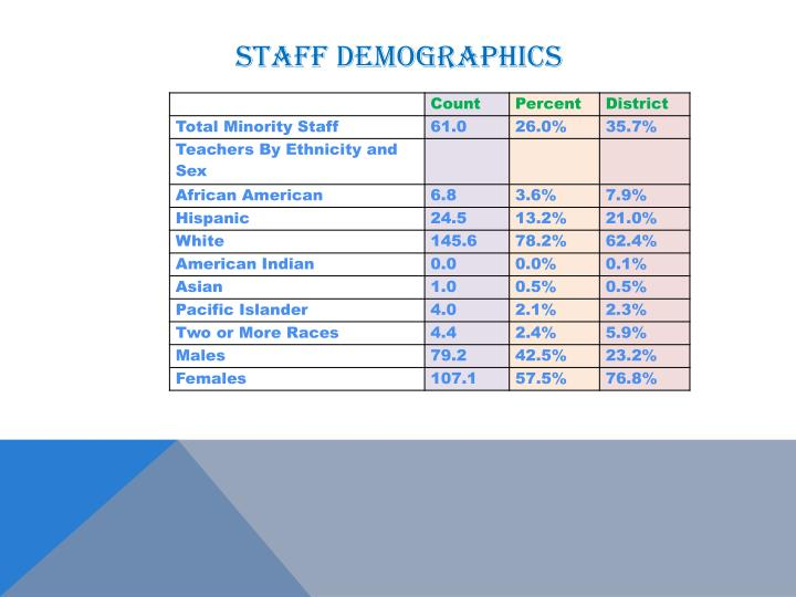 Staff demographics