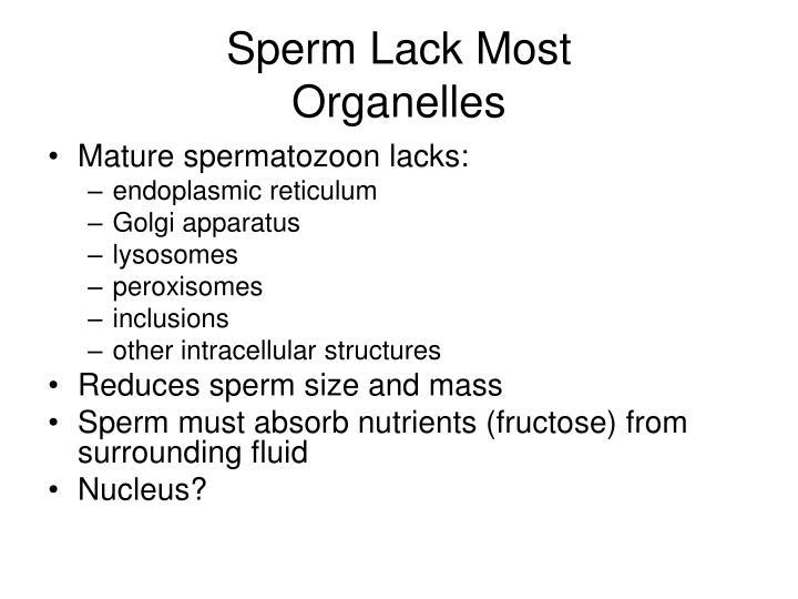 Sperm Lack Most
