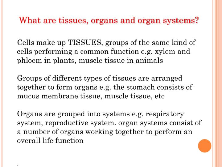What are tissues, organs and organ systems?