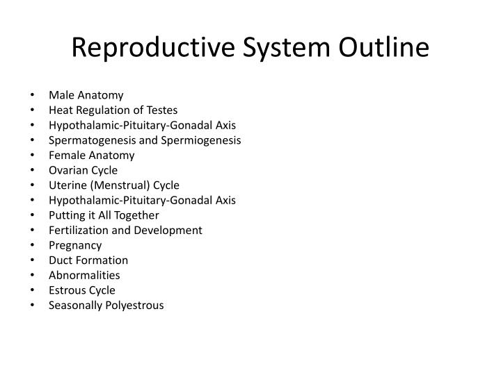 Reproductive system outline