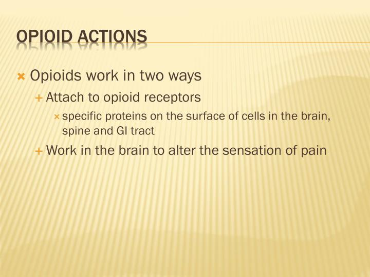 Opioids work in two ways
