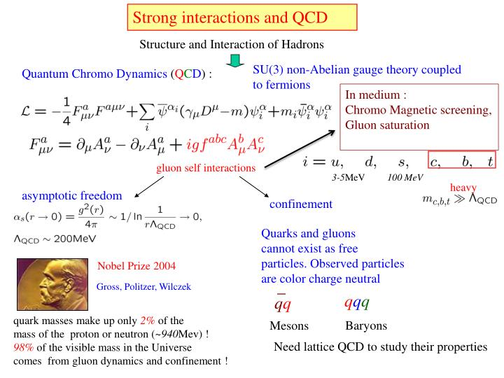 Strong interactions and QCD