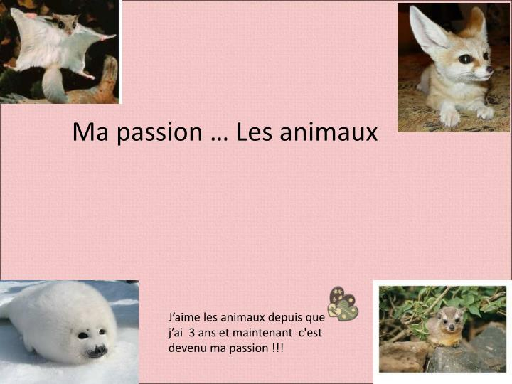 Ma passion … Les animaux