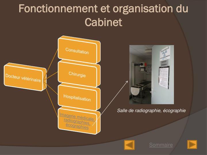 Fonctionnement et organisation du Cabinet