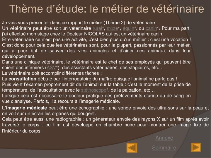 Thème d'étude: le métier de vétérinaire