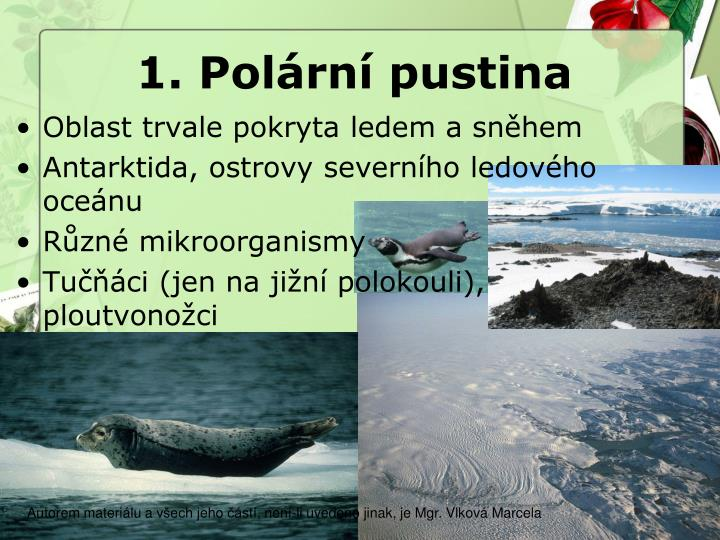 1. Polární pustina