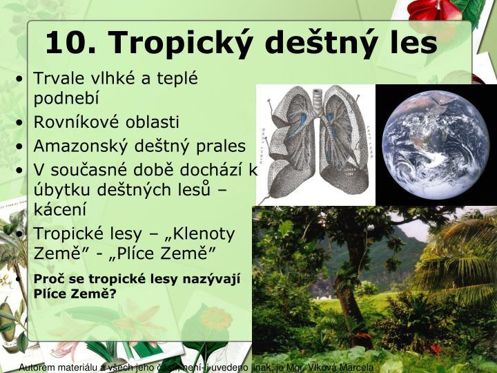 10. Tropický deštný les