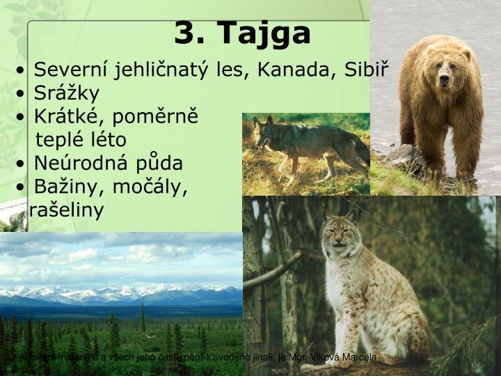 3. Tajga