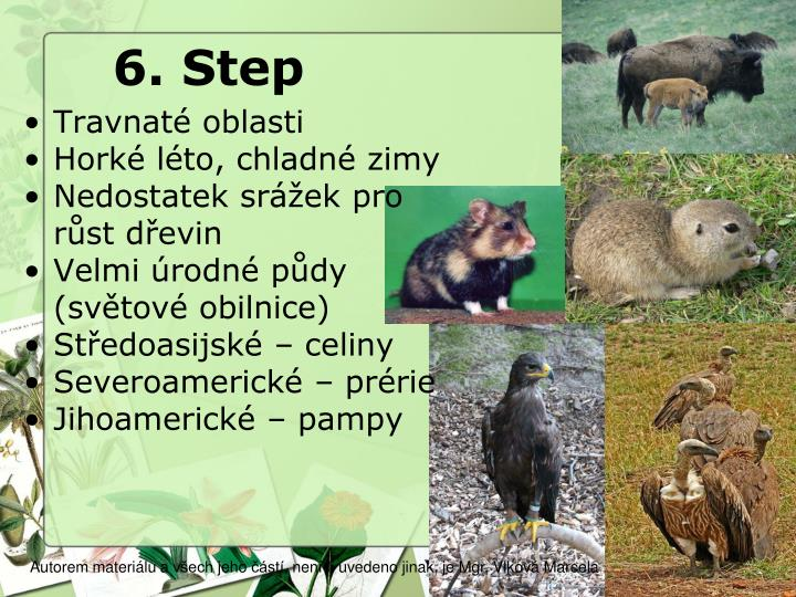 6. Step