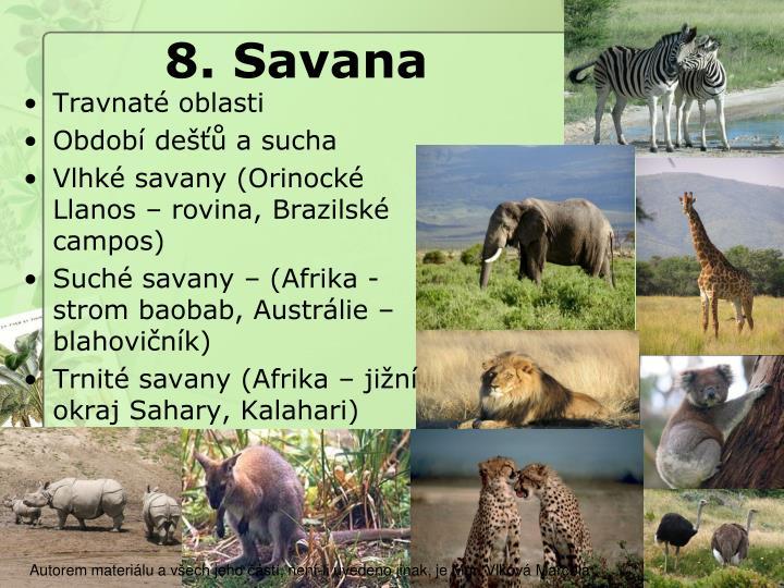 8. Savana