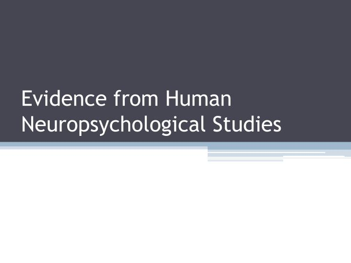 Evidence from Human Neuropsychological Studies