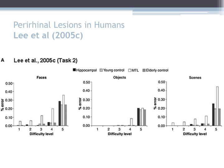 Perirhinal Lesions in Humans