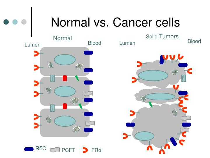 Lung Cancer Cells Vs Normal Cells - #traffic-club
