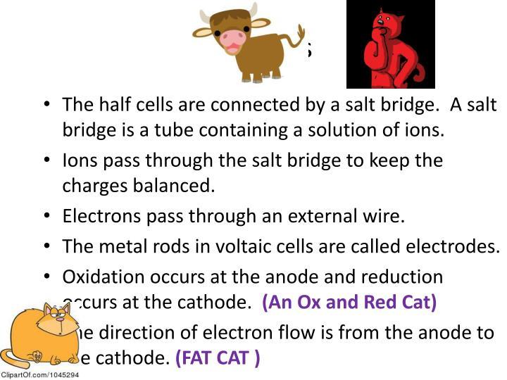 Half-Cells