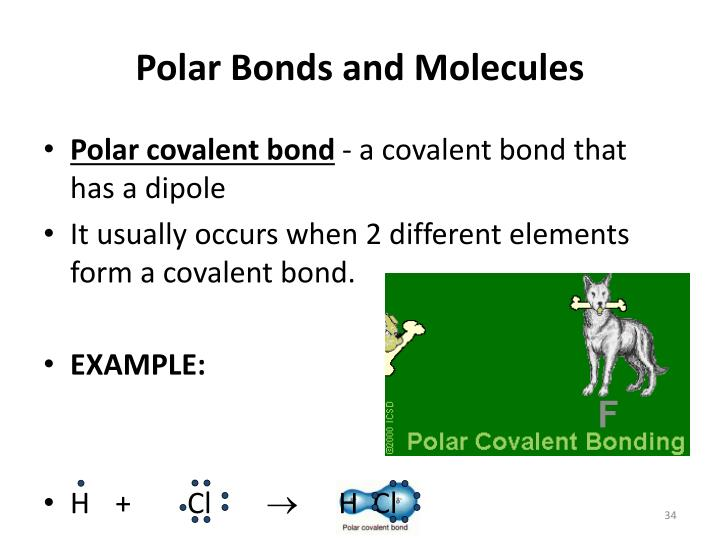 Polar Bonds and Molecules
