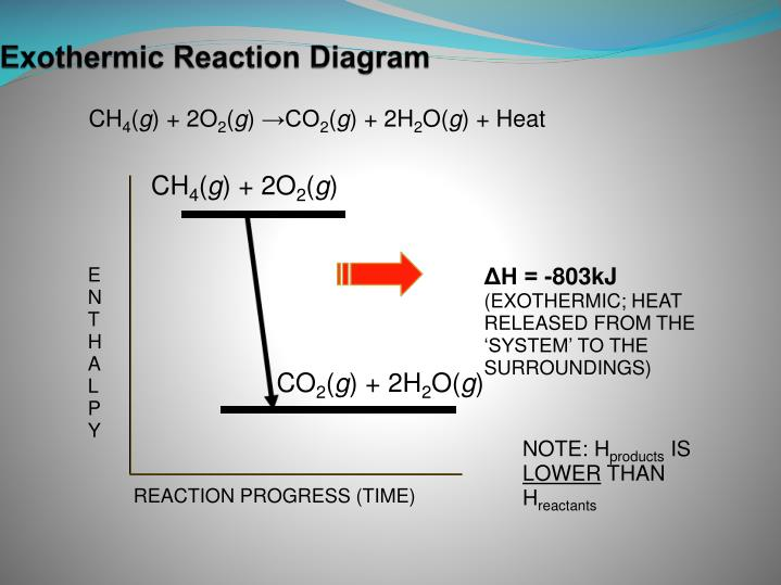 Exothermic Reaction Diagram