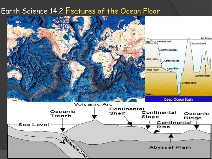Ppt earth science 14 2 f eatures of the ocean floor for Ocean floor description