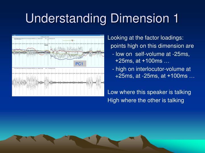 Understanding Dimension 1