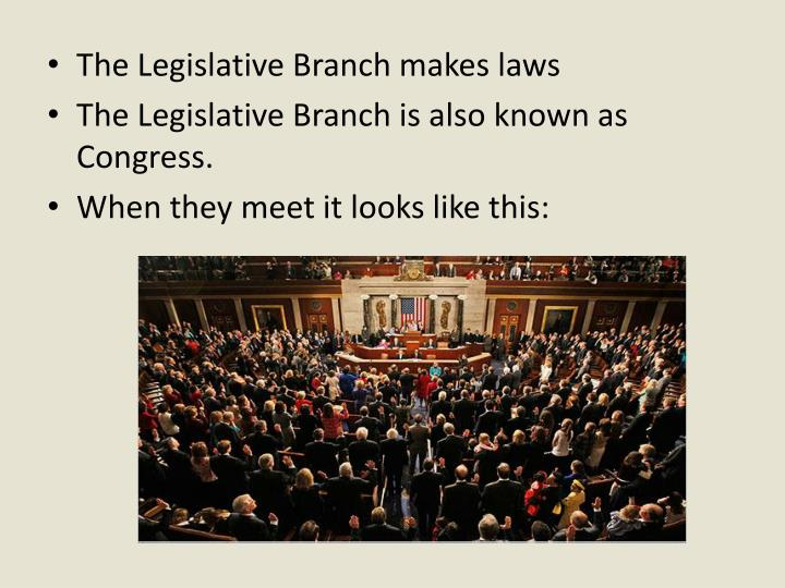 The Legislative Branch makes laws