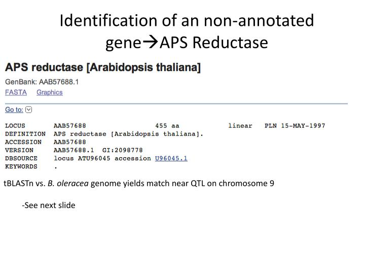Identification of an non-annotated