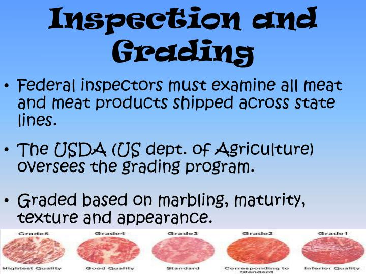 Inspection and Grading