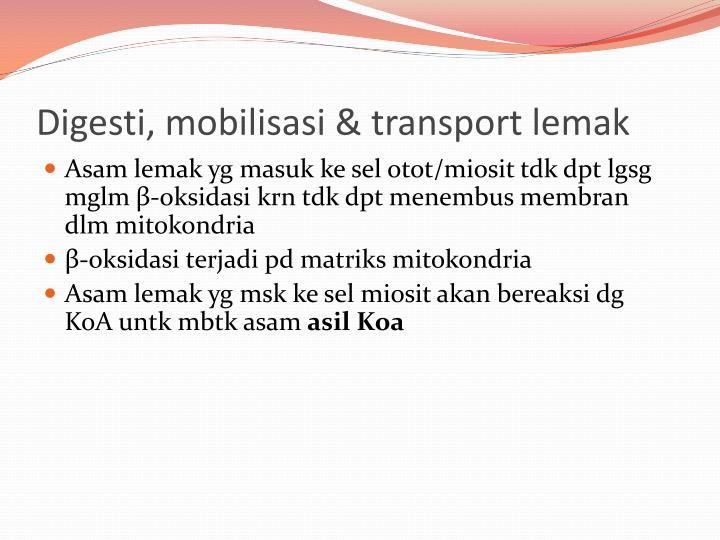 Digesti, mobilisasi & transport lemak