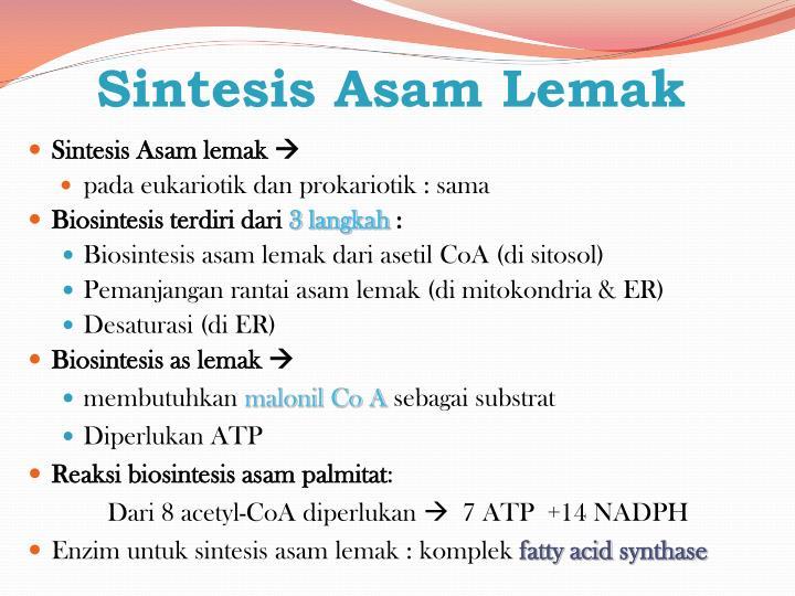 Sintesis Asam Lemak