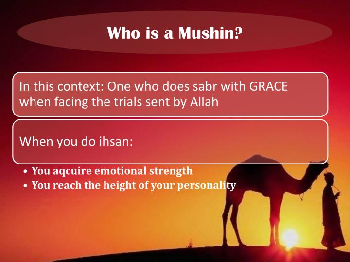 Who is a Mushin?