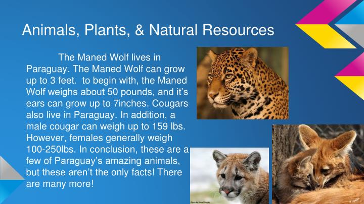 Animals, Plants, & Natural Resources