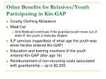 other benefits for relatives youth participating in kin gap