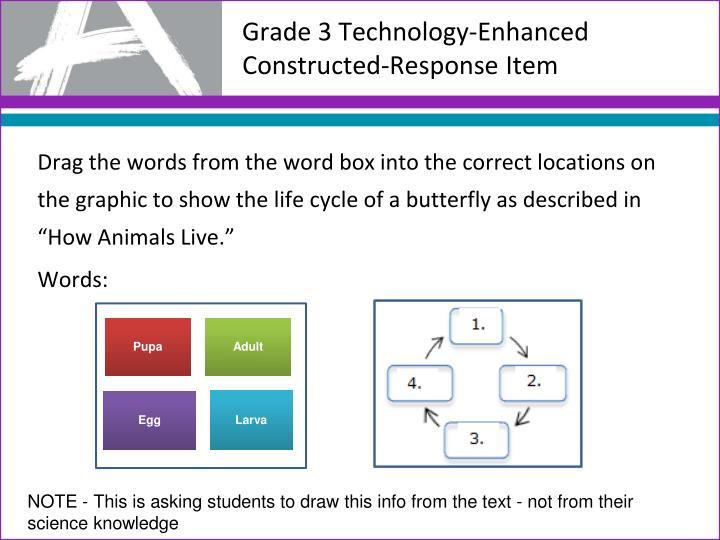 Grade 3 Technology-Enhanced Constructed-Response Item
