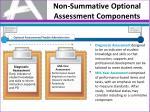 non summative optional assessment components