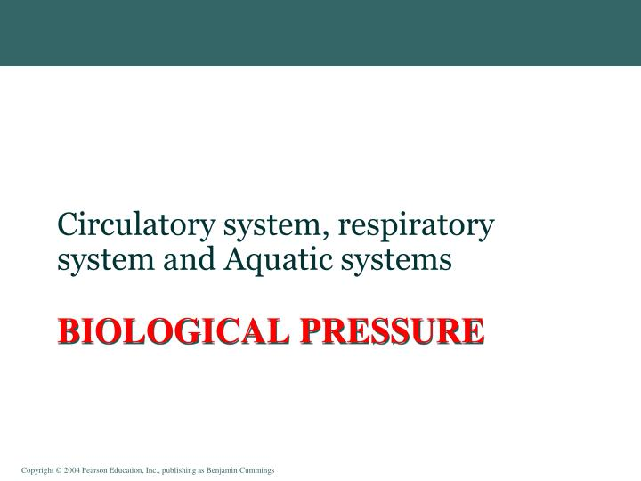 Circulatory system, respiratory system and Aquatic systems