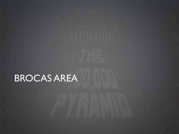 Brocas