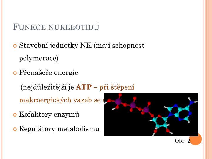 Funkce nukleotidů