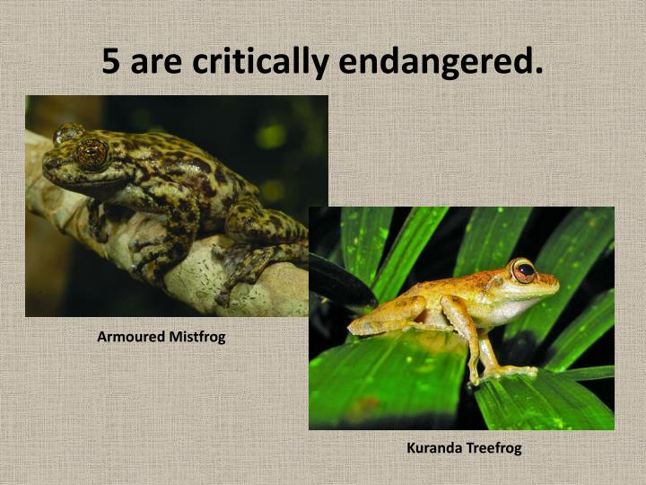 5 are critically endangered.