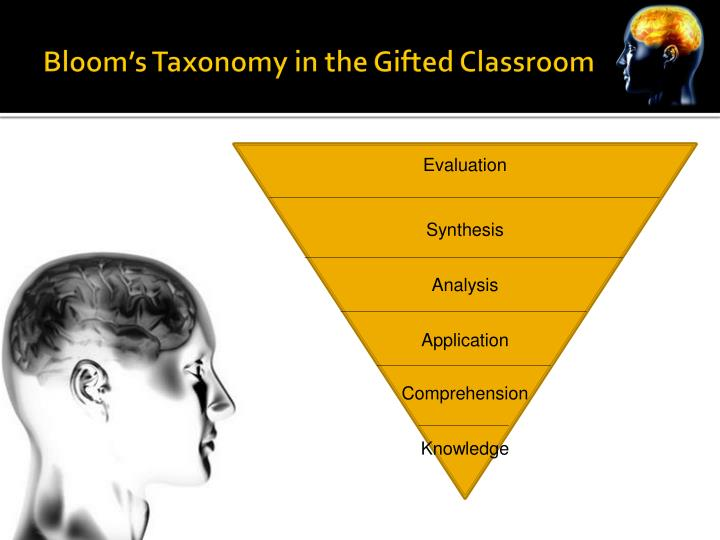 Bloom's Taxonomy in the Gifted Classroom