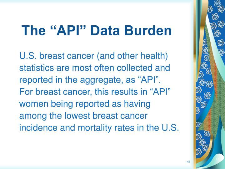 """The """"API"""" Data Burden"""