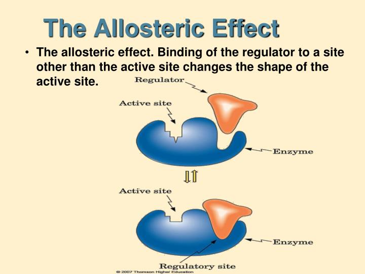 The Allosteric Effect