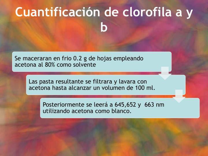 Cuantificación de clorofila a y b