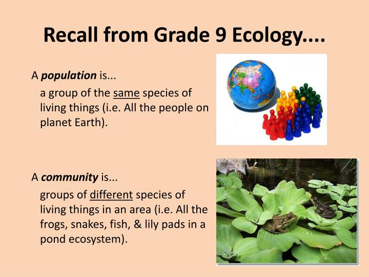 Recall from Grade 9 Ecology....