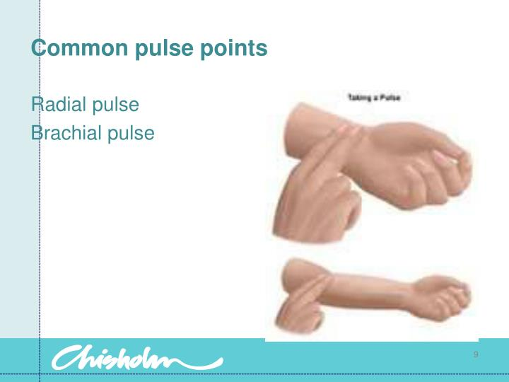 Common pulse points
