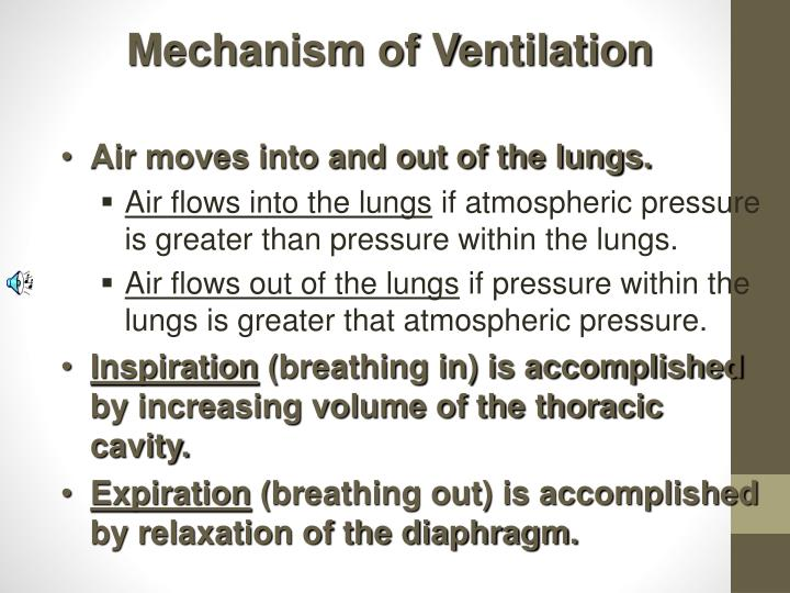 Mechanism of Ventilation