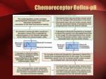 chemoreceptor reflex ph