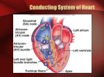 conducting system of heart