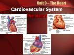unit 9 the heart