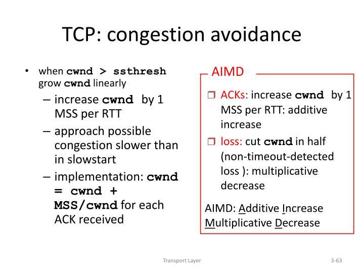 TCP: congestion avoidance
