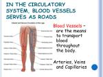 in the circulatory system blood vessels serves as roads