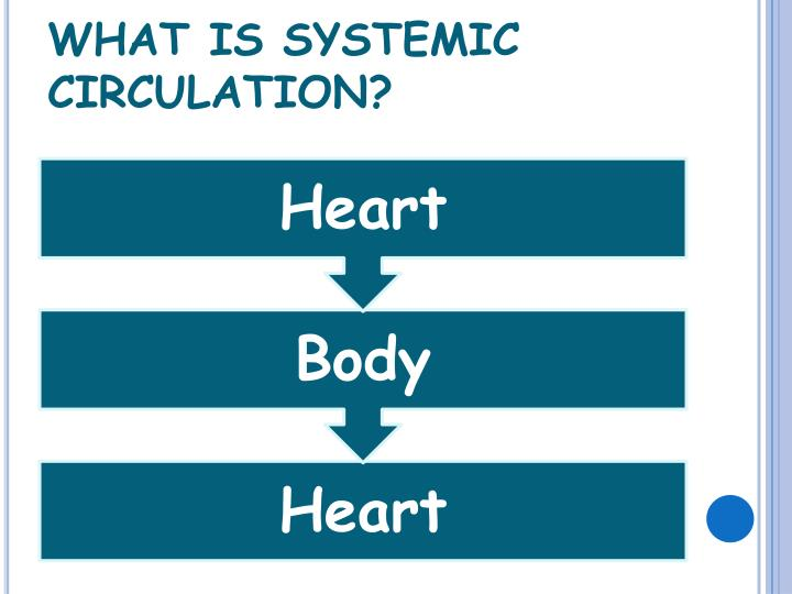 WHAT IS SYSTEMIC CIRCULATION?