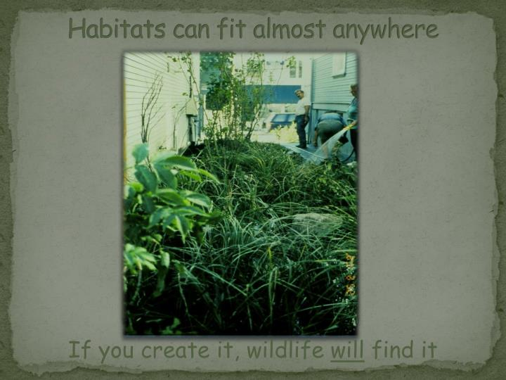 Habitats can fit almost anywhere